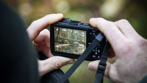 Best Shoot and Point Cameras
