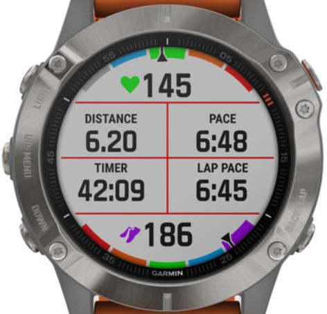 Garmin Smartwatch Fenix 6 Pro